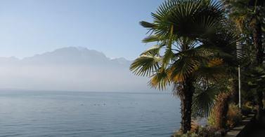 Noyade dans le lac Léman à la Tour-de-Peilz